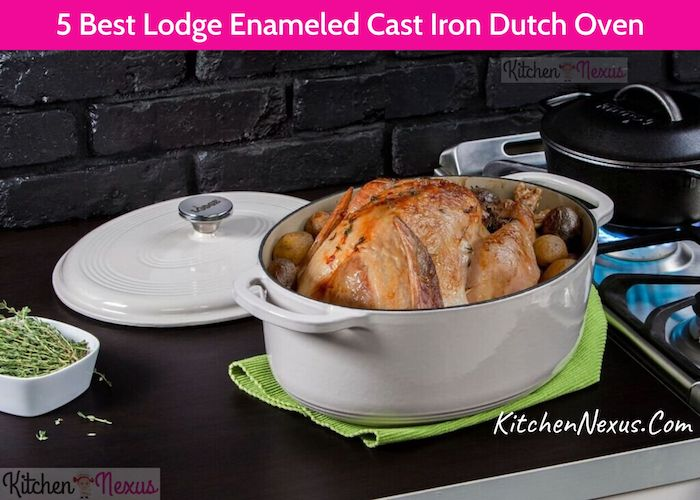 5 Best Lodge Enameled Cast Iron Dutch Oven To Buy