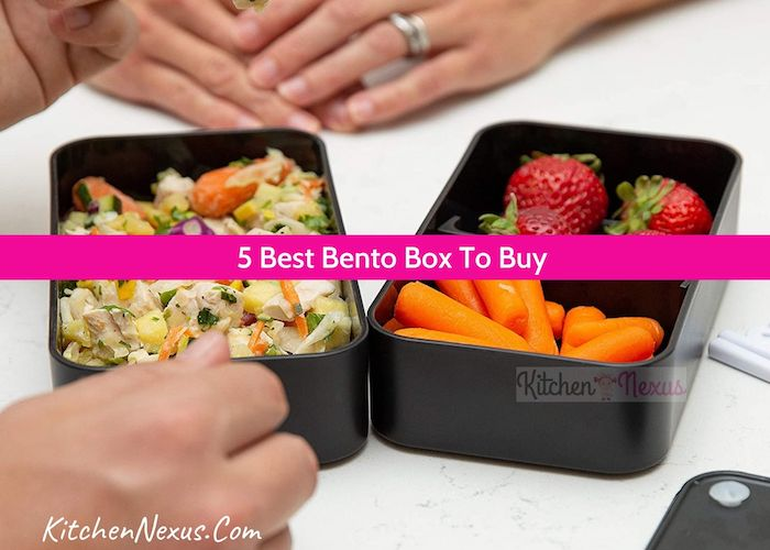 Best Bento Lunch Box Review