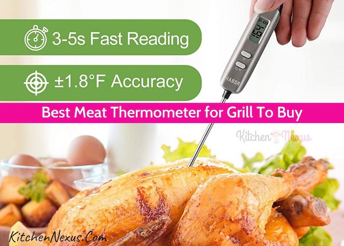 Best Meat Thermometer for Grill Reviews