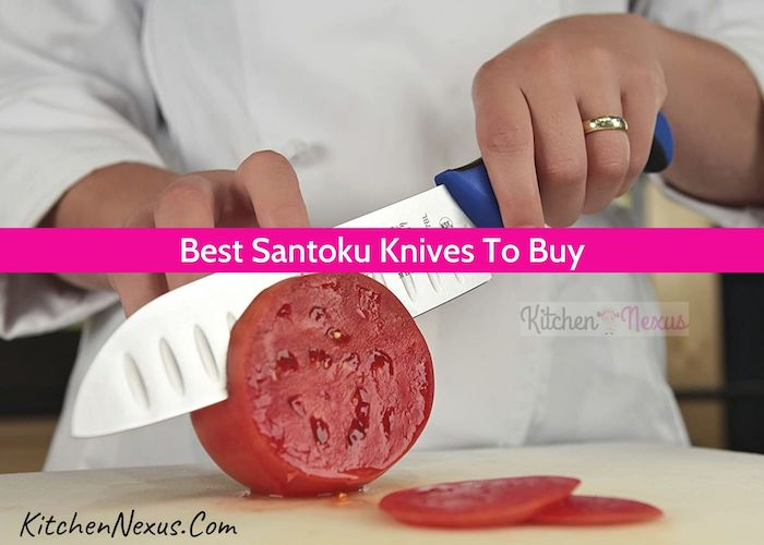 Best Santoku Knives Review